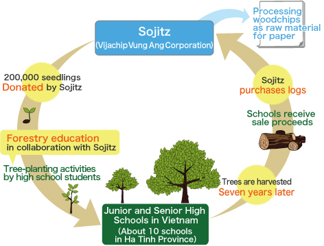 why tree plantation is important